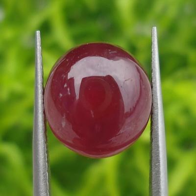 Mustika Merah Delima Pamungkas