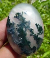 Batu Mustika Keramat Lumut