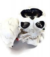 Asbak Unik Rokok Kepala Tengkorak Putih