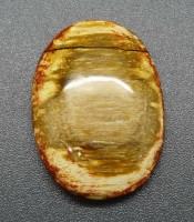 Batu Mustika Fosil Kayu