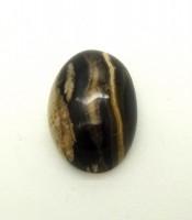 Batu Mustika Saka Usia Jutaan Tahun