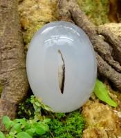 Batu Mustika Tunggal Asmara