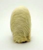 Azimat Kantong Macan Putih Yang Asli