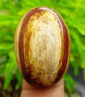 Manfaat Batu Mustika Pohon Beringin