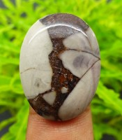 Manfaat Batu Mustika Jaran Goyang Ampuh