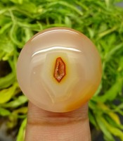 Manfaat Mustika Vagina Ratu Peri
