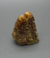 Manfaat Pusaka Fosil Keramat Rojo Gundolo