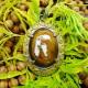 Manfaat Liontin Mustika Raja Khodam Sulawesi