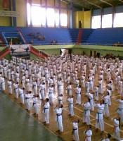 Grosir Baju Seragam Karate Kumite Senkaido Original Murah