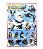 Grosir Poster Dinding Burung Pemburu