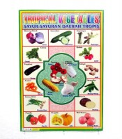 Grosir Poster Dinding Sayur Sayuran Daerah Tropis
