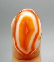 Kegunaan Mustika Pelet Vagina Larva
