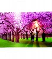 Grosir Poster Dinding Bunga Sakura 3D