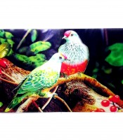 Grosir Poster Dinding Burung 3 Dimensi Full Color