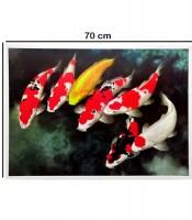Grosir Poster Dinding Gambar Ikan Koi