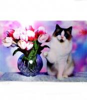 Grosir Poster Dinding Gambar Kucing 3 Dimensi