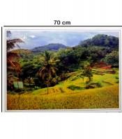 Grosir Poster Dinding Sawah Pedesaan