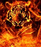 Khasiat Pengisian Khodam Macan Segoro Geni