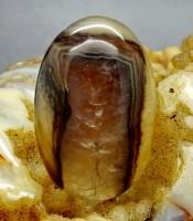Manfaat Mustika Gerbang Gaib Kristal Keramat