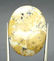 Kegunaan Batu Mustika Welut Putih