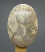 Manfaat Batu Mustika Pagar Gaib Lipan Putih