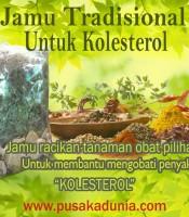 Manfaat Jamu Tradisional Obat Kolesterol