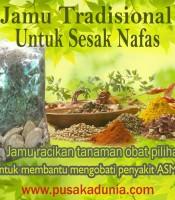 Manfaat Jamu Tradisional Obat Sesak Nafas