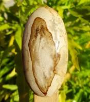Manfaat Batu Mustika Khodam Bolo Sewu