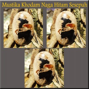 Manfaat Mustika Khodam Naga Hitam Sesepuh