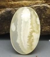 Manfaat Mustika Lipan Putih Tundung Asmoro