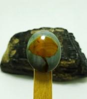 Kegunaan Batu Mustika Jamur Penarik Pelanggan