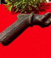 Khasiat Pusaka Fosil Tanduk Keramat