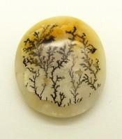 Batu Mustika Bonsai Rumput Laut