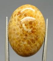 Kegunaan Mustika Sisik Ular Emas