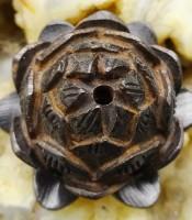 Manfaat Azimat keberuntungan Bunga Lotus Hitam