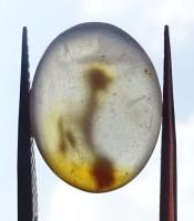 Kegunaan Batu Mustika Khodam Semut Merah